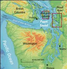 Puget sound quake